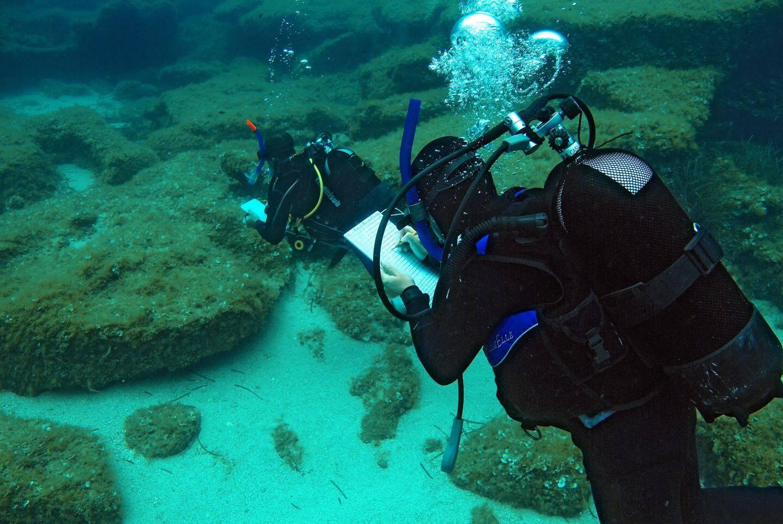 Paolo Guidetti en plein recensement visuel des poissons.(Photo Egidio Trainito)