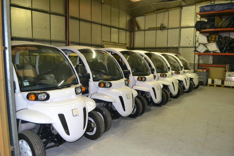 La société est spécialisée dans la réparation, la vente, le rachat de véhicules électriques neufs ou d'occasion et de pièces détachées.