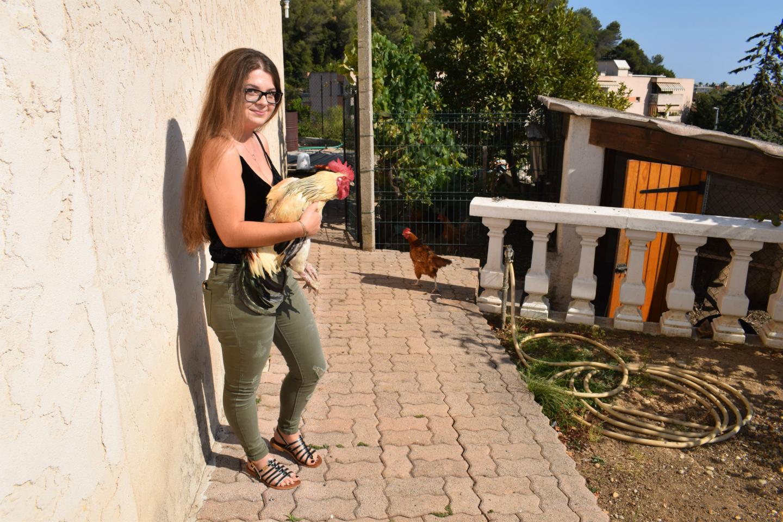 Dans les bras de la fille d'Yvette Yengo, l'un des deux coqs dont les chants sont responsables du conflit de voisinage.