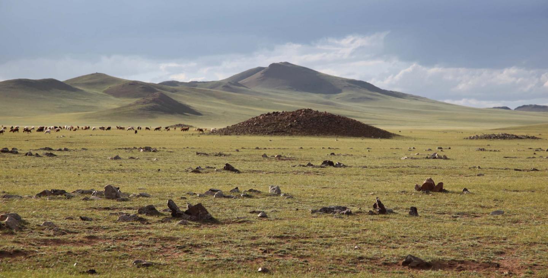 La province de l'Arkhangaï, au centre de la Mongolie.