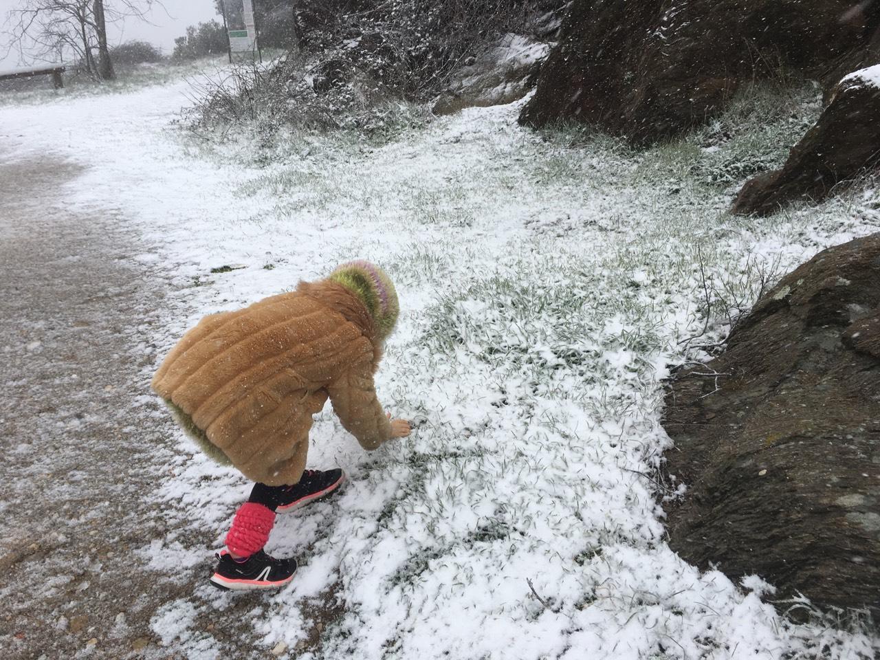 La neige à La Garde-Freinet