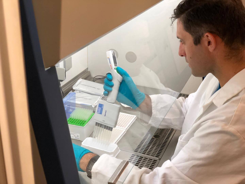 Au laboratoire, le technicien met les échantillons en culture.