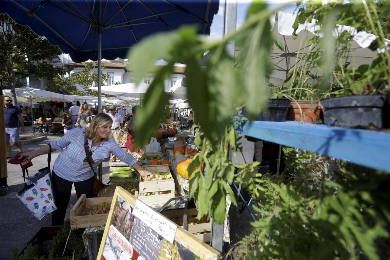Quand l'agriculture bio et locale se déplace en ville : phare de la foire, le marché a réuni 50 producteurs.