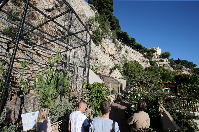 La partie privative de la falaise couvre l'intégralité du Jardin animalier, jusqu'à l'arrondi visible en dessous du Palais princier.
