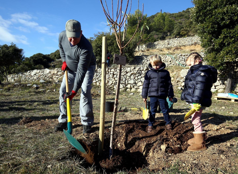 Avec leur père, les jumeaux mettent la main à la pâte dans le domaine de Fontbonne pour entamer la plantation d'une centaine d'arbres offerts par le gouvernement au couple princier pour leur anniversaire.