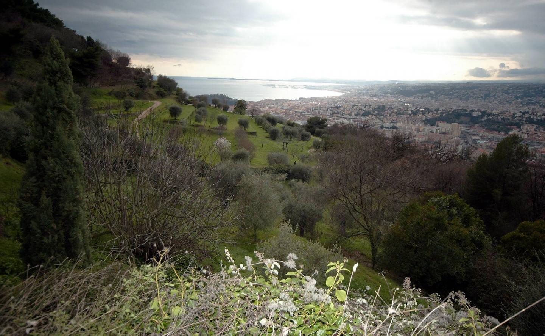 Le parc départemental du Vinaigrier à Nice 25 ha de nature préservées de l'urbanisation.