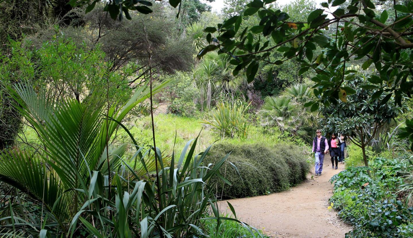 Les jardins du Domaine du Rayol accueilleront la manifestation le vendredi 14 juin.