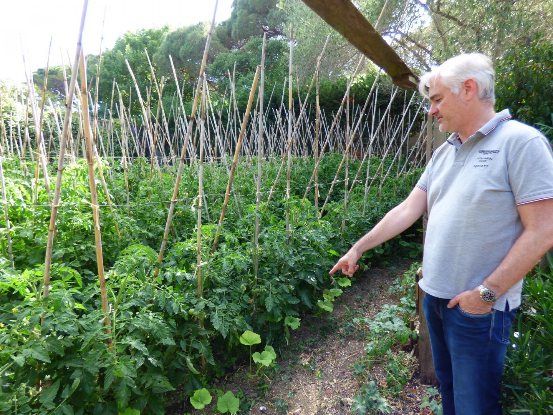 Le compost issu des cuisines sert depuis longtemps à nourrir le potager. Christophe Vallet montre ici ses plants de tomates, près de 900 et de 21 variétés différentes!