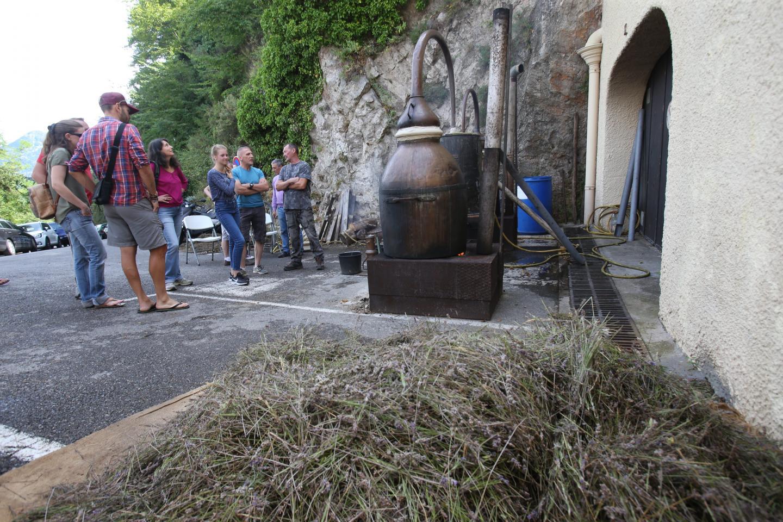 Les visiteurs et locaux ont pu apprécier les explications de l'extraction de lavande pour faire de l'huile essentielle