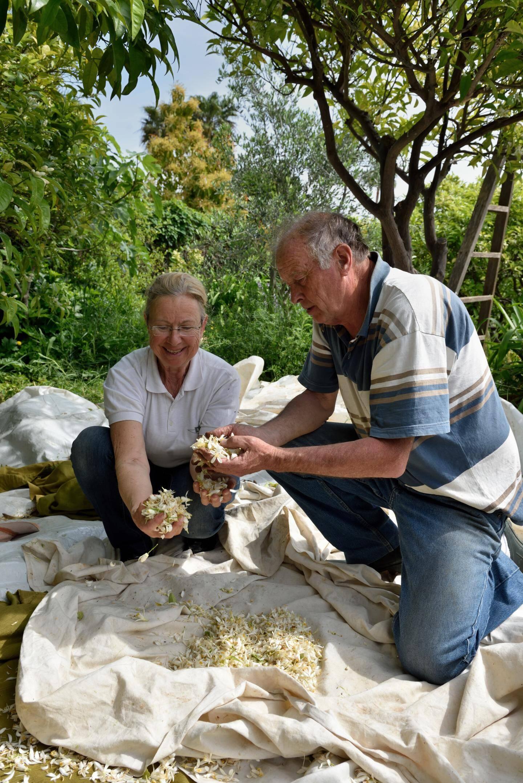 Gislaine et Tony veulent sensibiliser leurs hôtes de passage au tourisme éco-responsable au sein leur verger bio.