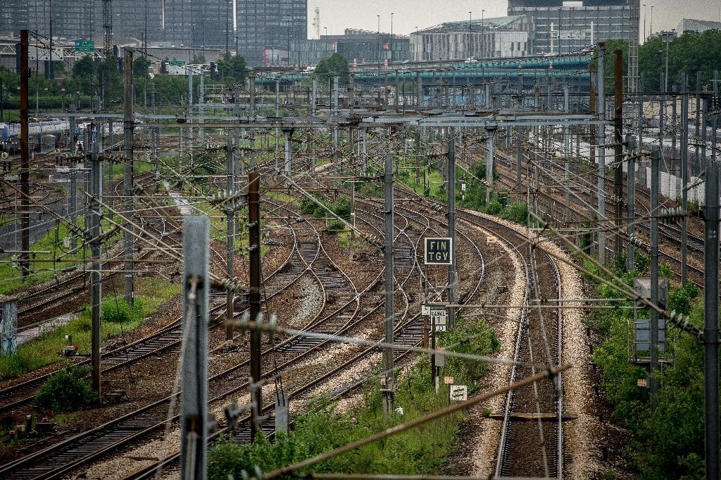Abords enherbés des voies ferrées à la gare de Lille, en juin 2016