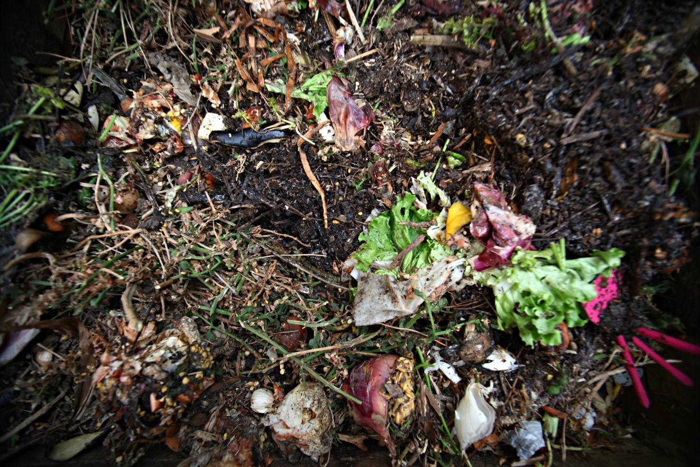 La maturation du compost dure entre 6 et 8 mois.