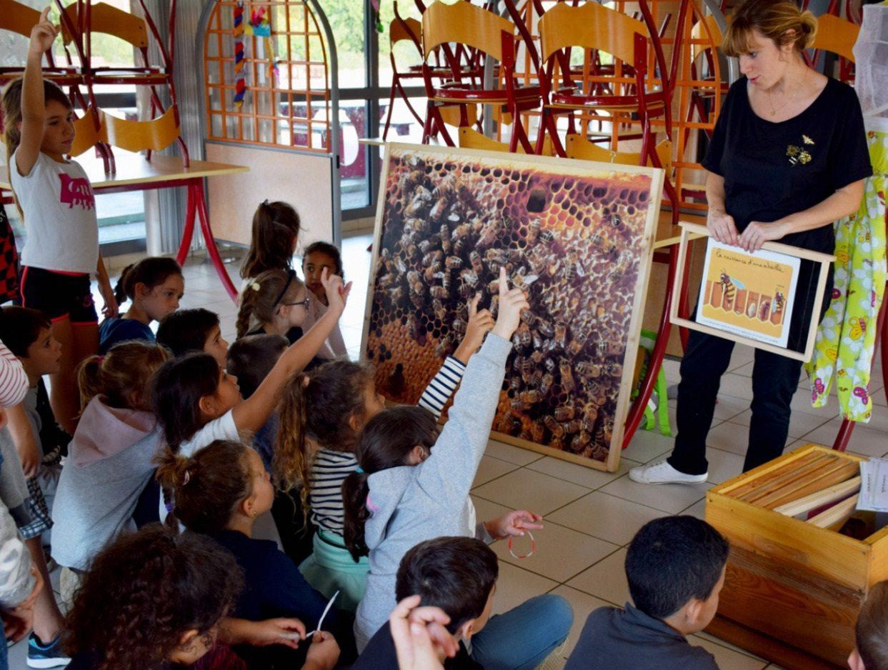 Laura a expliqué le rôle des abeilles dans l'environnement.