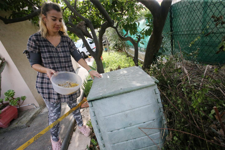 Le compost permet de réduire ses déchets végétaux.