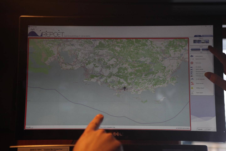 Les membres d'équipage doivent signaler et partager les caractéristiques et positions des cétacés rencontrés sur leur parcours.