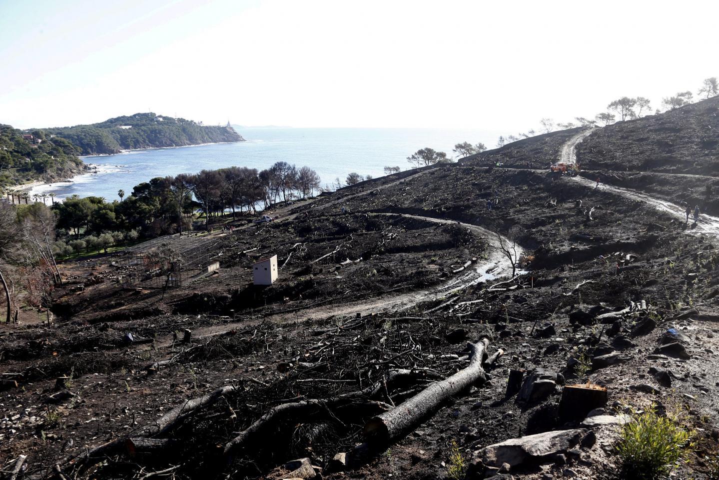 Un incendie a parcouru entre 25 et 30 hectares de la forêt, le 29 juillet.