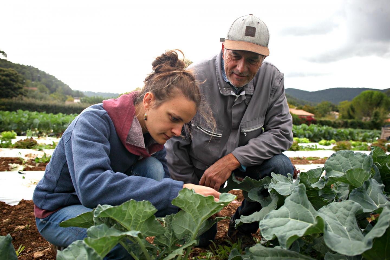 Marie Rabassa accompagne les agriculteurs qui, comme Pierre, se convertissent au bio.