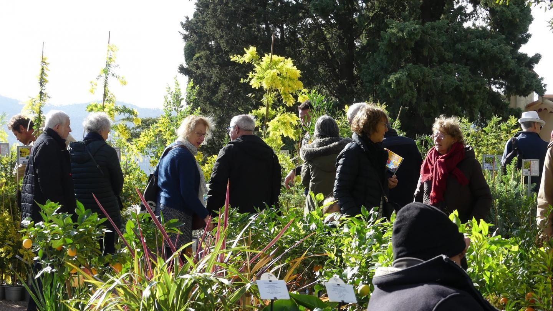 Mimosalia a attiré plus de 5000 visiteurs.