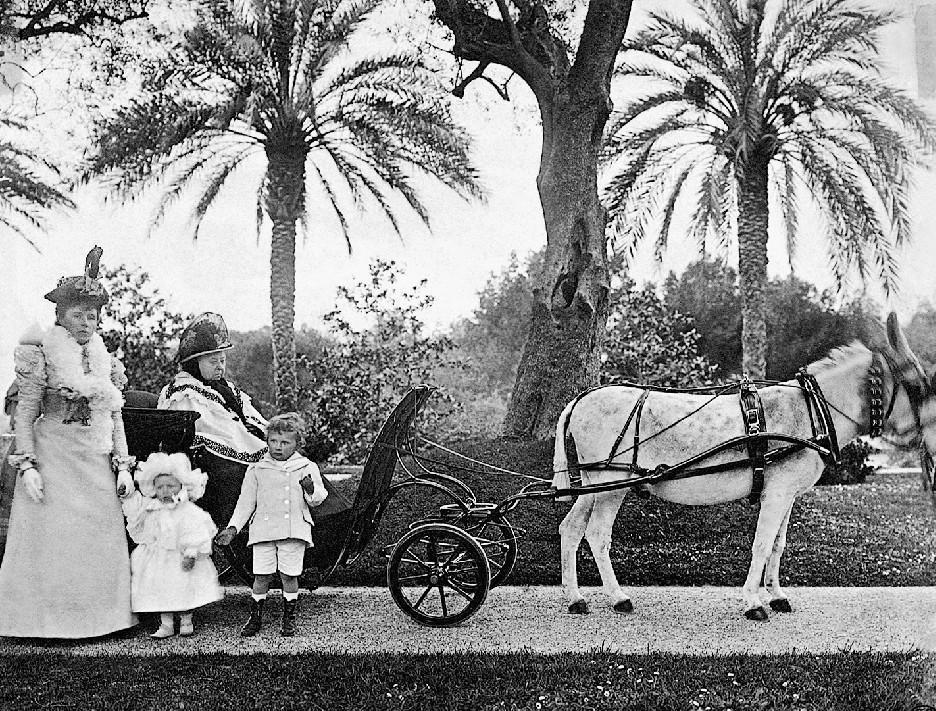 La reine Victoria dans son cabriolet tiré par l'âne Jacquot.