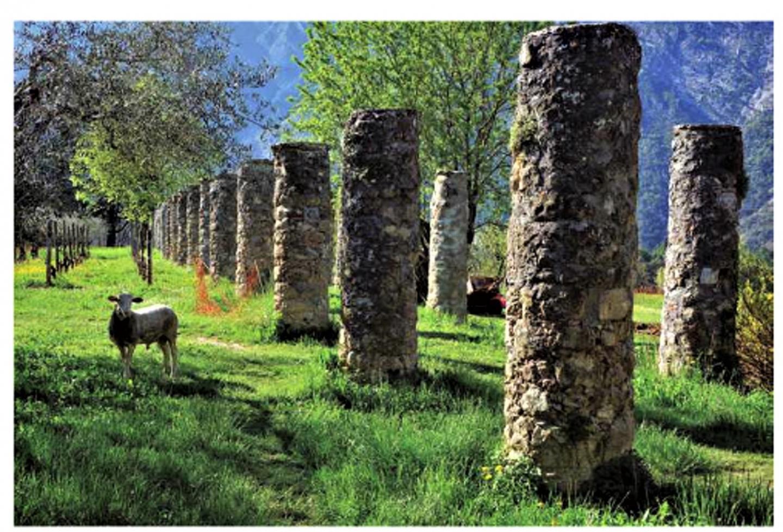 Bien que située sur un domaine privé, l'Allée des Grimaldi posée au cœur du village, est accessible.