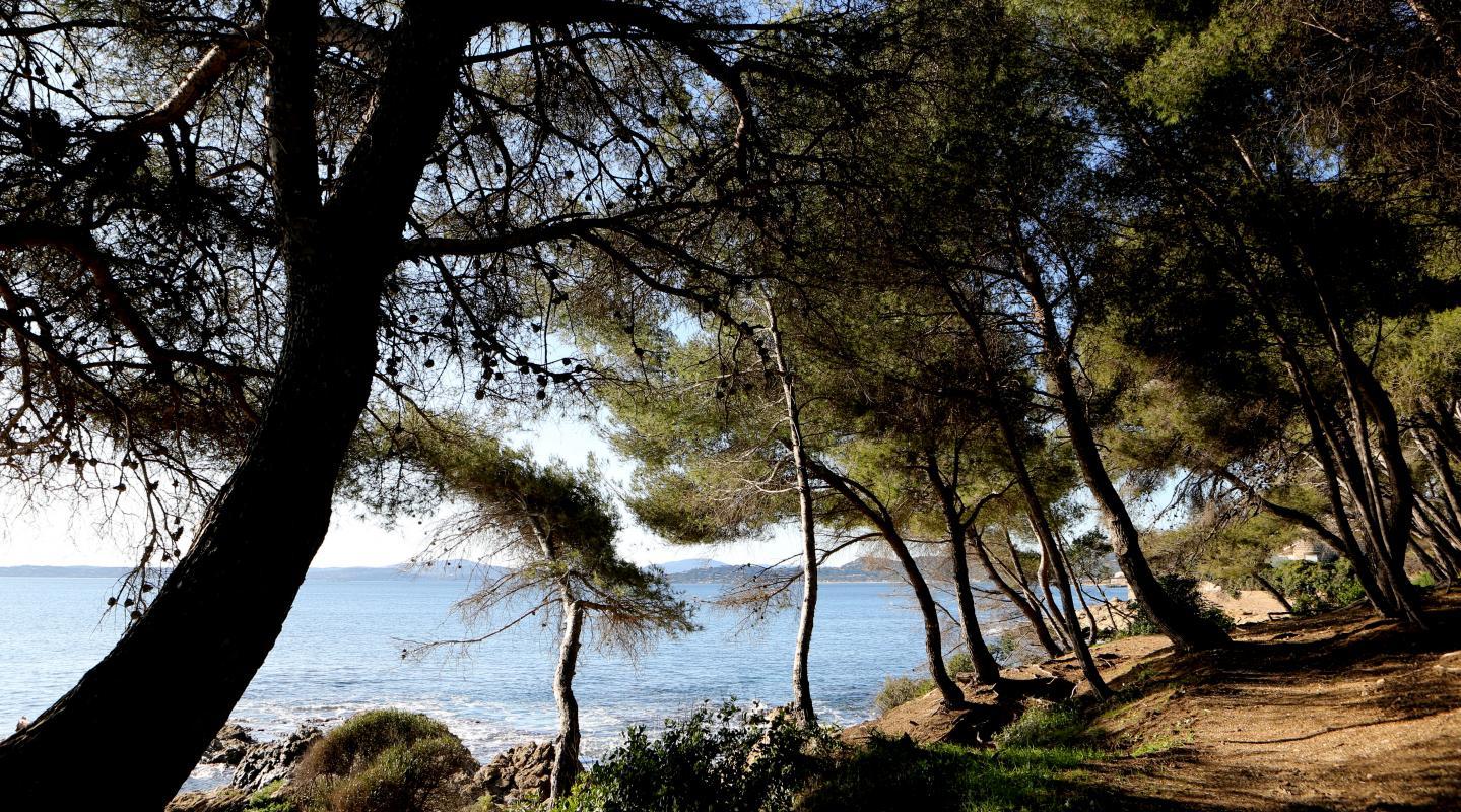 Le sentier des douaniers, ou sentier du littoral, aux Issambres à Roquebrune-sur-Argens.