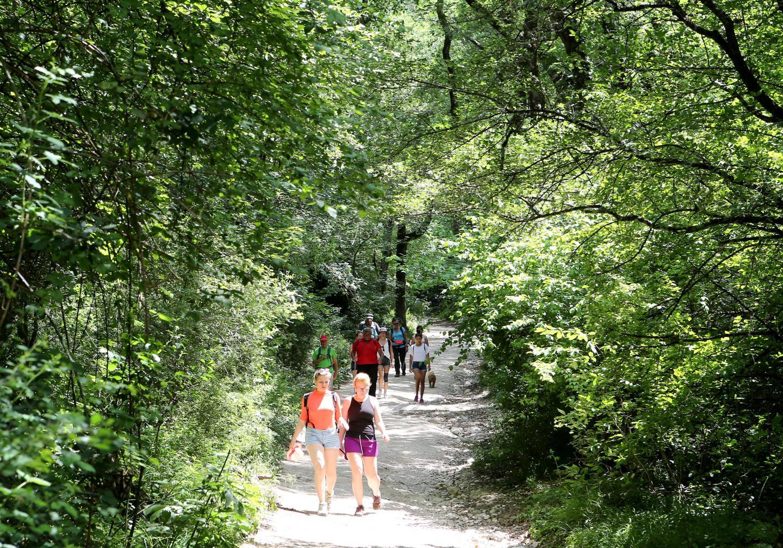 La problématique du mégot sera évoquée dans les sites de randonnées et les sites remarquables comme la sainte Baume.