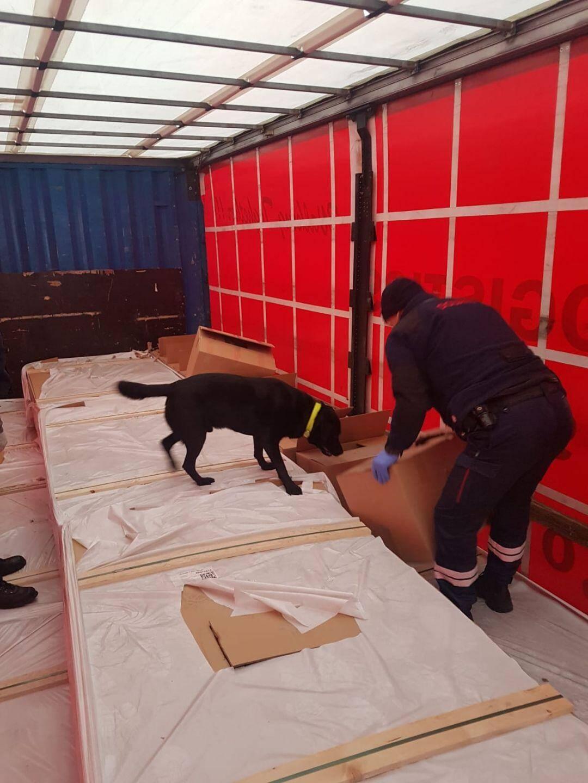 Aidées de leur chien, les douanes ont rapidement trouvé la marchandise.