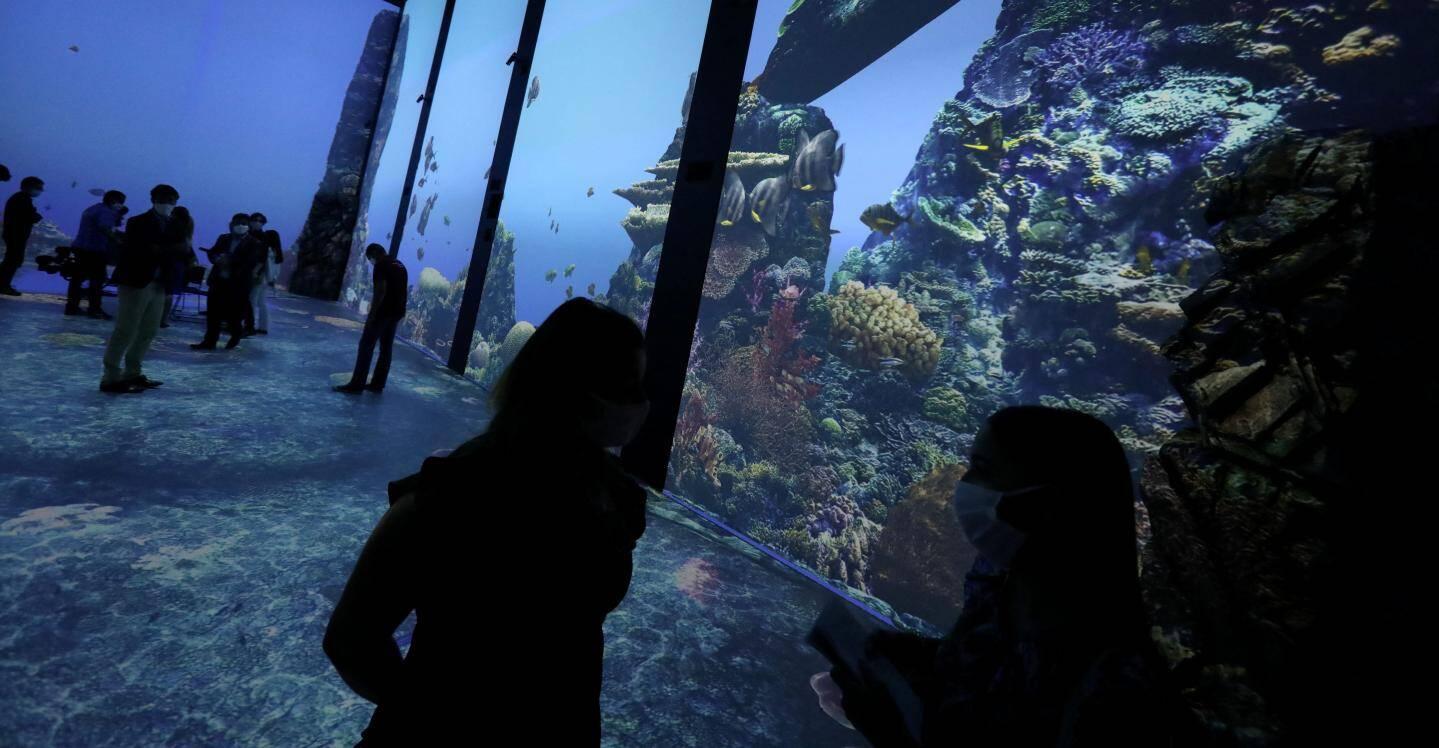 Au total, les écrans couvrent 650 mètres carrés pour diffuser les images, notamment au sol.