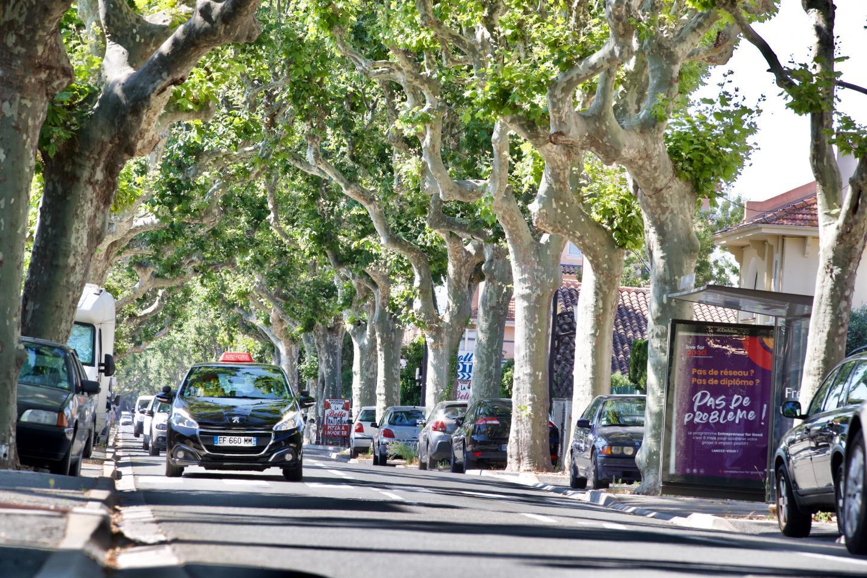 Le Boulevard de la Mer à Fréjus.