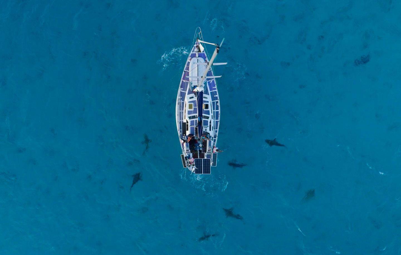 Le voilier, sur lequel Cyrielle et ses compagnons d'aventure ont voyagé, entouré de requins.