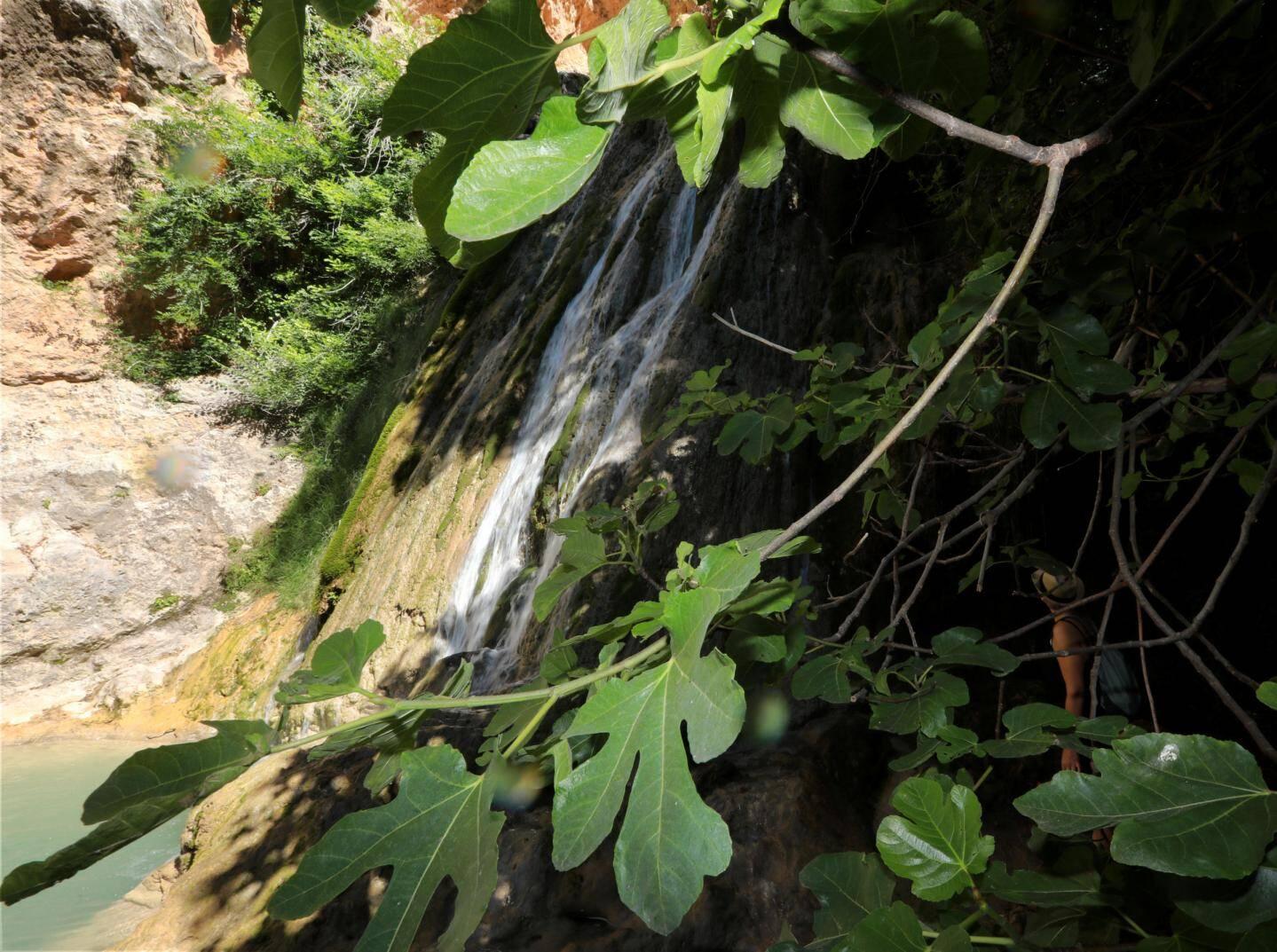 Véritable oasis en pleine canicule: le vallon des Carmes.