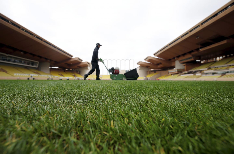 La pelouse du stade Louis-II est prête à reprendre du service dès dimanche.