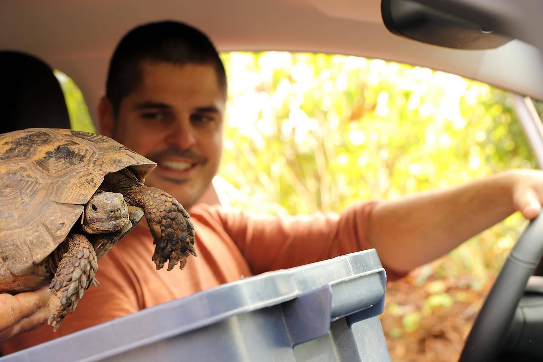 En route pour le village des tortues Carnoules...
