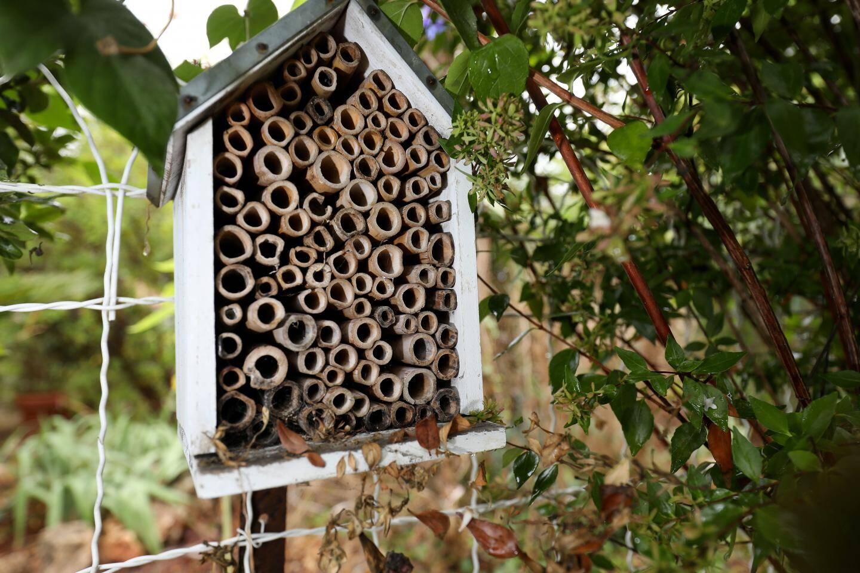 Les « hôtels » à insectes sont importants afin de les abriter.