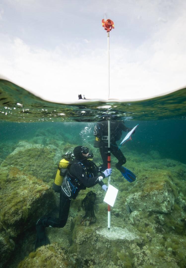 Le site étudié se situe à seulement à quelques mètres de profondeur, certains parties étant très peu immergées..