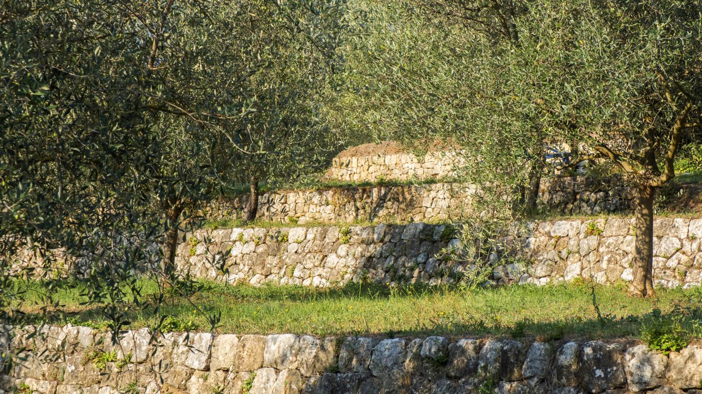 Lancôme, leader mondial de la beauté de luxe, a finalisé l'acquisition d'un domaine à Grasse, capitale mondiale du parfum. Baptisé Domaine de la Rose by Lancôme, le terrain est notamment composé de 4 hectares de champs cultivés en agriculture biologique, de restanques pluri-centenaires ou encore d'une distillerie.