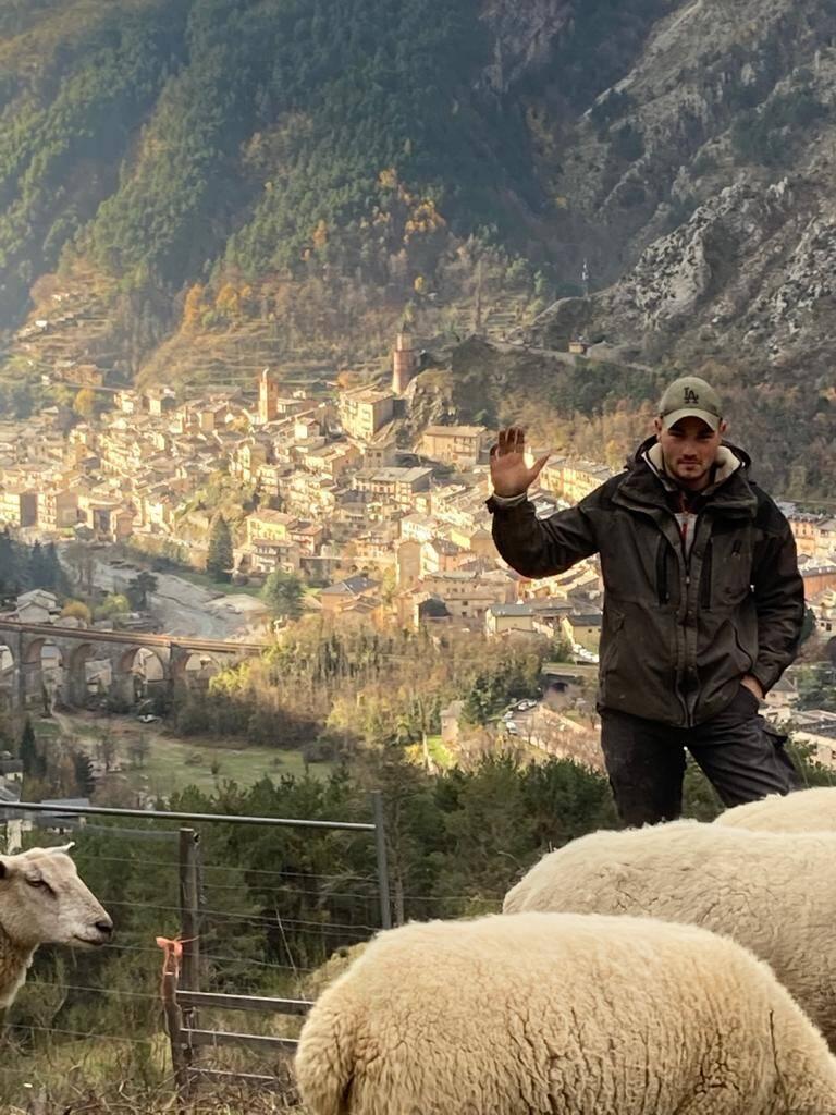 Matthieu Lanteri va pouvoir abriter ses bêtes grâce à une bergerie tunnel, qu'il a montée ce week-end !