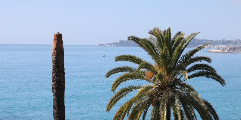 Quel temps fera-t-il dans les Alpes-Maritimes ce samedi 13 février 2021 - Nice-Matin