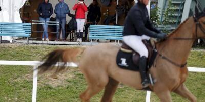 """Etalon mort d'épuisement à Cagnes: le prévenu a fait subir """"un véritable parcours du combattant à son cheval"""""""