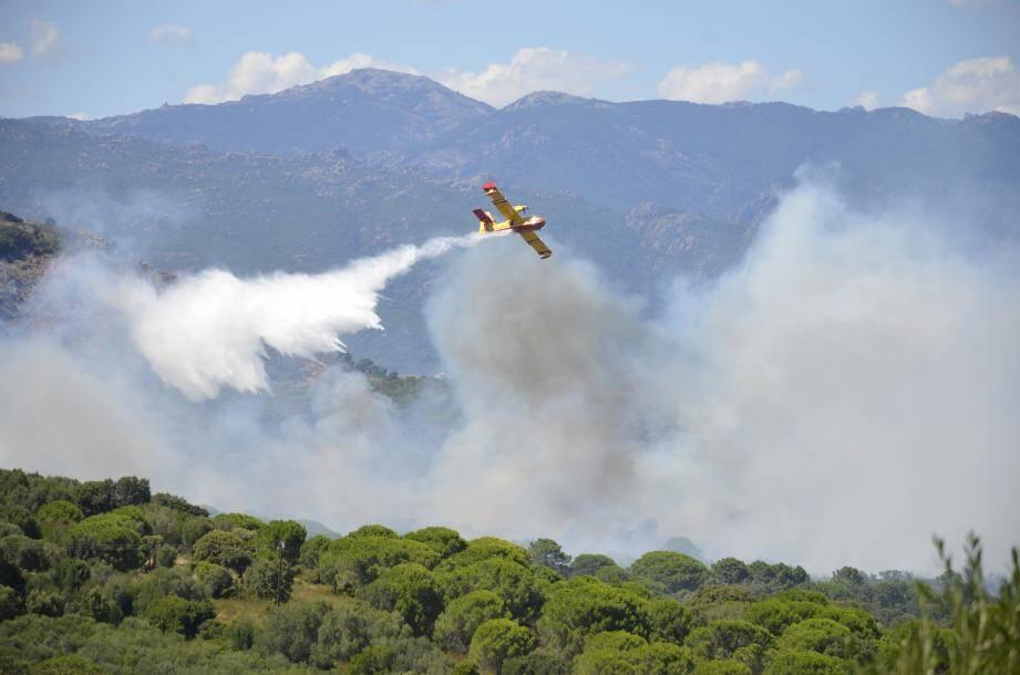 Un incendie a dévasté 3 hectares au lieu-dit Piccovaghja.