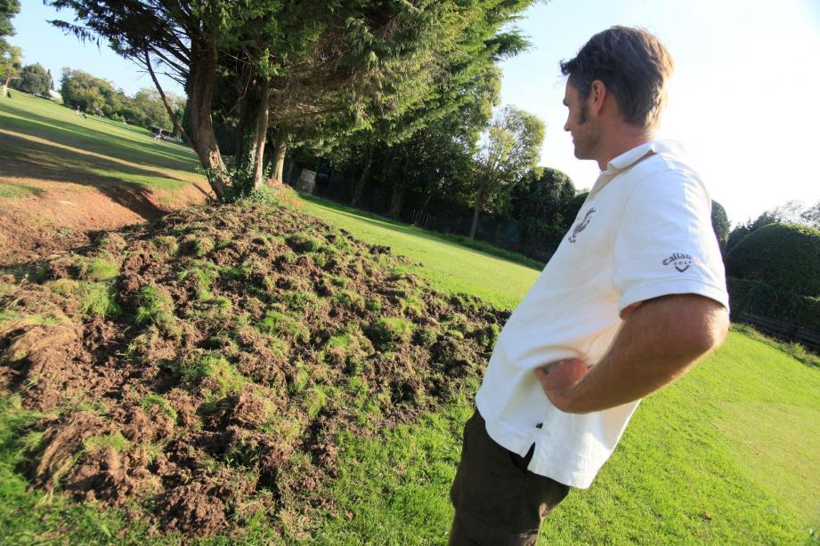 Que ce soit dans le jardin privé de M. Siraga(ci-dessous) ou au golf de Biot, les sangliers laissent derrière eux un vrai «champ de patates».(Photos C.Dodergny et V.Rossotti)