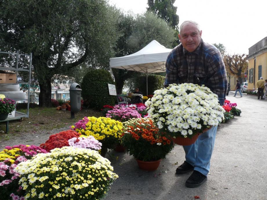 Claude Balestra vend cyclamens et chrysanthèmes à part égale alors qu'à des débuts, seules les chrysanthèmes étaient vendues à la Toussaint.(Photo C. He.)