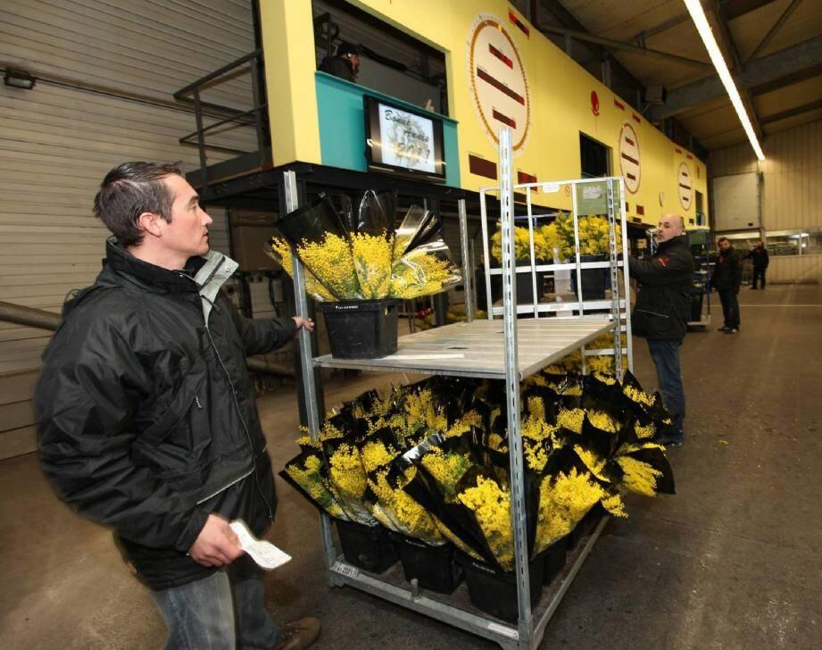 Le marché aux fleurs, une structure en danger aujourd'hui.