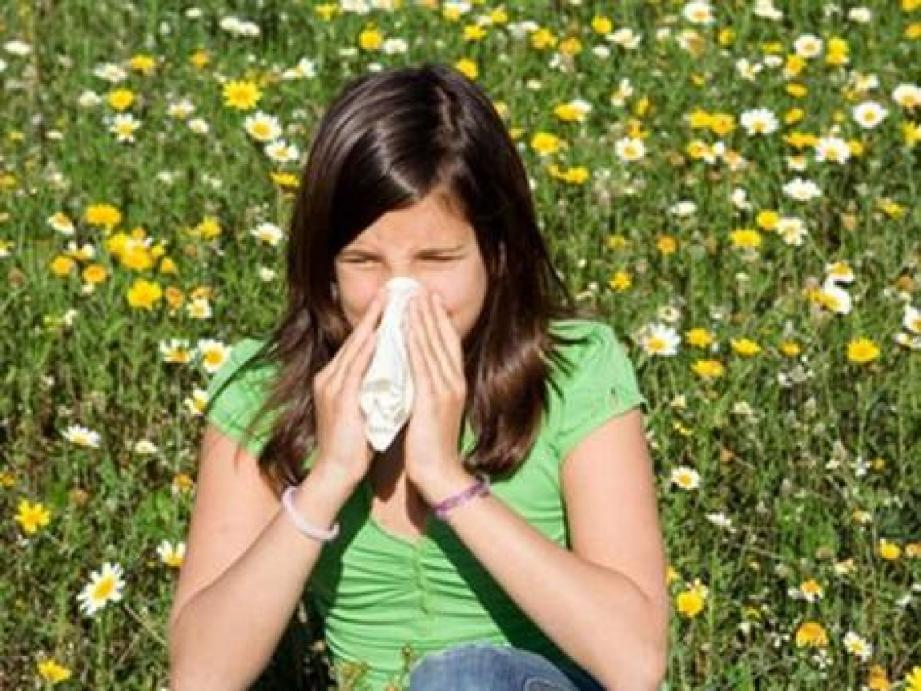 Les pollens de graminées, très légers, se dispersent très loin au moindre souffle de vent.(DR)
