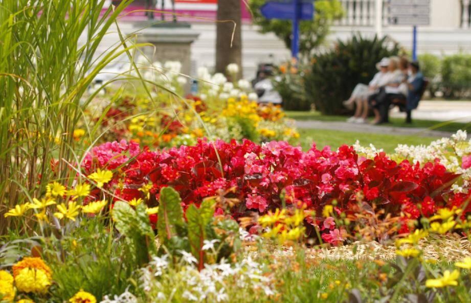 Pour le fleurissement, la Ville privilégie les plantes tropicales qui sont peu gourmandes en eau.