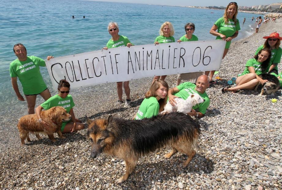 Hier, Christian Razeau a, une nouvelle fois, bravé l'interdiction de baignade, en compagnie de Pilou et d'autres propriétaires de chiens.