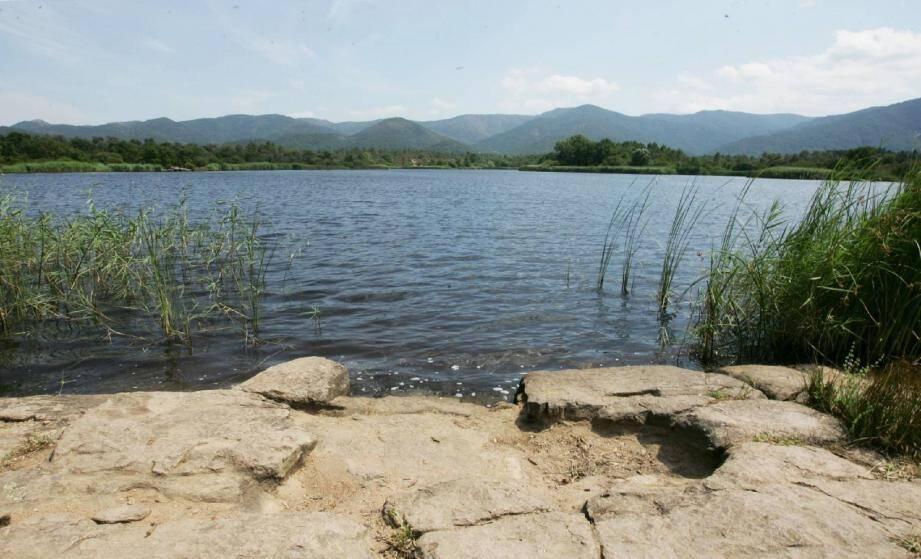 Ce petit lac de 11 hectares est le refuge d'une faune et d'une flore étonnantes.