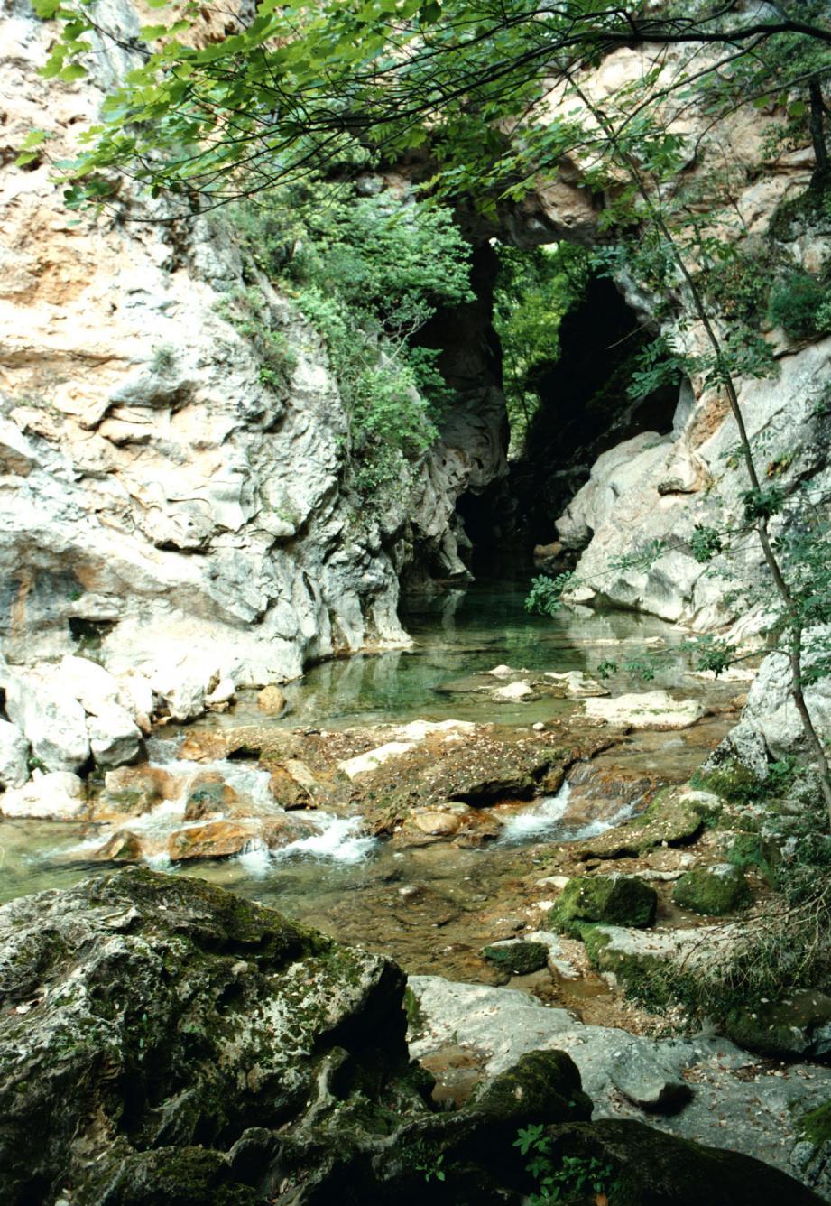 La Siagne nous mène jusqu'au pont naturel de Ponadieu.
