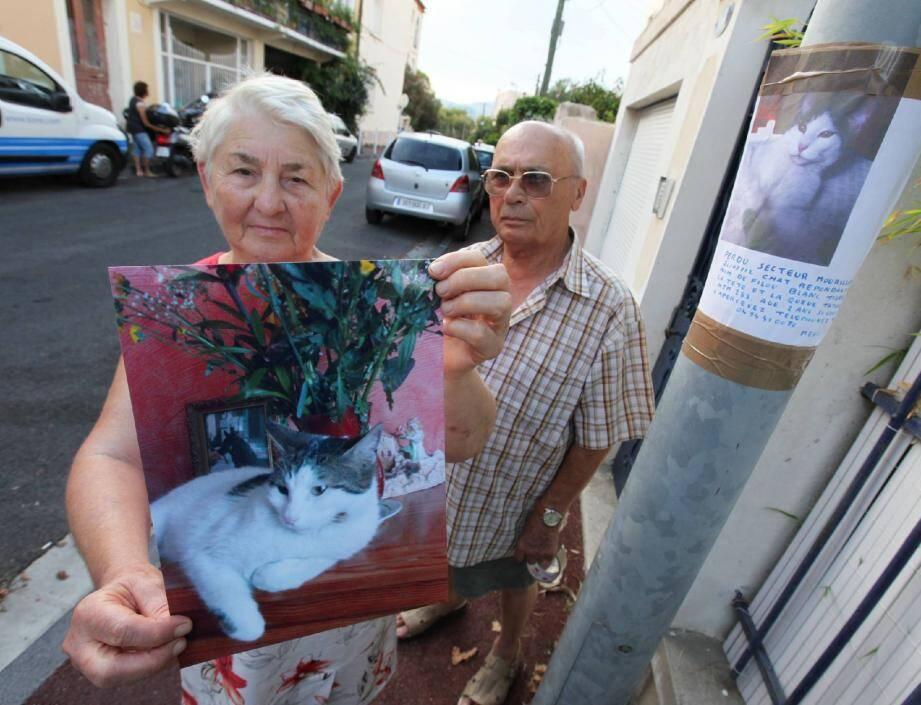 Au-delà de la peine d'avoir perdu leurs chats, les habitants ne comprennent pas ce qu'il se passe dans la rue des Frères Gay au Mourillon.