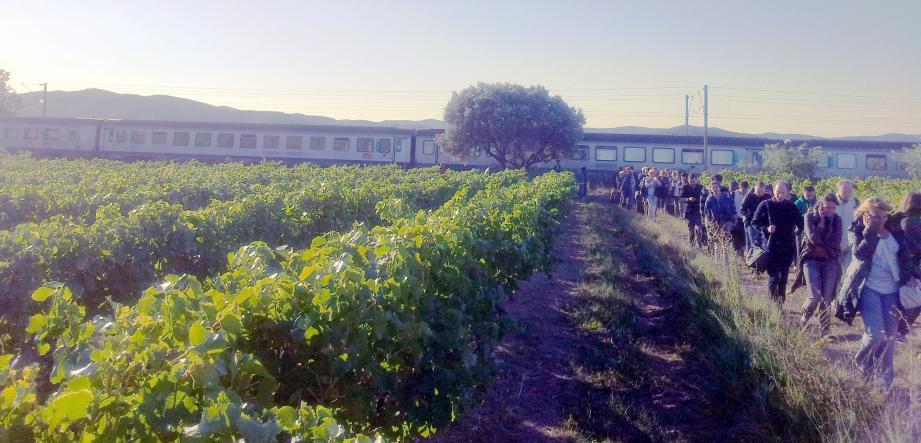 Des passagers du TER qui a endommagé une caténaire ce matin vers Puget-Ville ont dû traverser un champs de vigne pour rejoindre des bus affrétés par la SNCF.
